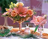 Pink (Rose), Hippeastrum (Amaryllis), Salmon-colored