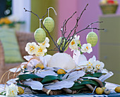 Ostrich egg and goose eggs as a vase