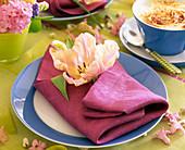 Tulipa 'Fantasy' (pink parrot tulip) on napkin