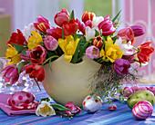Tulipa (tulips) mixed