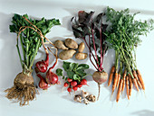 Carrots, beetroot, potatoes, radishes
