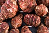 Helianthus tuberosus (Jerusalem artichoke) tubers