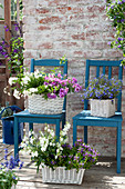 White baskets with balcony flowers on blue chairs