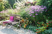 Autumn bed with Aster novae-angliae, Miscanthus sinensis
