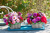Autumn table decoration in small baskets, aster, pink