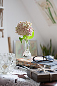 Hydrangea in vintage vase and spectacles on book