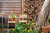 Bed of flowering spring plants in front of stacked firewood and wooden wall