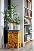 Candelabra aloe in white pot on colourful Moroccan side table