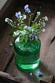 Vergissmeinnicht in einer grünen Flasche auf Holztablett