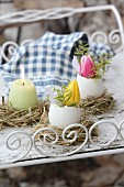 Tulips in egg shells and egg-shaped candles in straw Easter nests