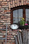 Hen motif on zinc tray and window box on windowsill above Easter eggs balanced on wooden poles