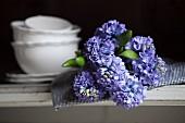 Blue hyacinths on checked cloth and crockery on shelf
