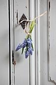 Posy of grape hyacinths hung from wardrobe key