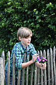 Boy holding posy of asters leaning over fence