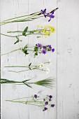 Bäuerliche Schnittblumen auf weißen Holzbrettern
