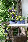 Blau-Gelbe Bauernblumendeko auf dem Gartentisch und Korbstuhl