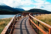 Wooden walkway with railing leading through Tierra del Fuego National Park in Argentina