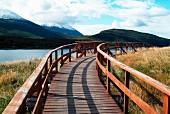 Holzsteg mit Geländer durch den Nationalpark in Ushuaia, Argentinien