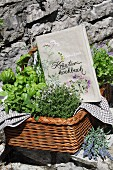 Book cover embroidered with floral motifs and herbs in wicker basket