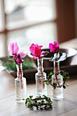 Cyclamen in small glass bottles and tiny wreaths