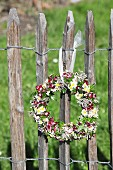 Wreath of sweet Williams and chamomile hung from garden fence