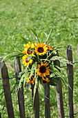 Bouquet of sunflowers on wooden fence