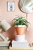 Houseplant in painted terracotta pot on stacked decorative box next to table lamp