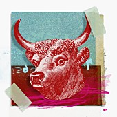 Montage of zodiac Taurus