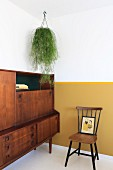 Trailing plant suspended above retro cabinet against wall with yellow dado