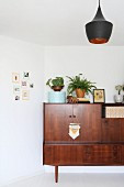 Plants and ornaments on top of 50s sideboard