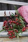 Posy of rose hips under red and white woollen blanket on vintage wooden bench