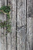 A heart shaped wire hanger beside an ivy plant on a wooden background