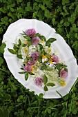 Blüten-Potpourri auf weisser Porzellanplatte im grünen Klee