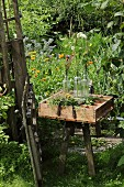 Various flowers and glass bottles in vintage wooden crate in rural garden