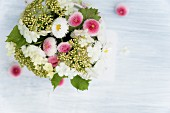 Posy of bellis and viburnum flowers