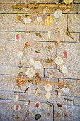 Mobile made of shells in front of stone wall