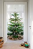 Blick durch offene Tür auf großen geschmückten Weihnachtsbaum