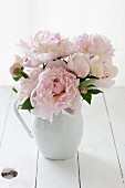 Jug of pink peonies