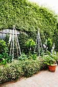 High climbing aids in the garden