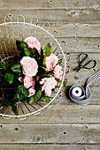 Delicate pink roses in a wire basket