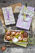 Card gift boxes, flower bulbs and paper flowers