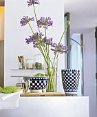 Vase of Agapanthus between chequered ceramics