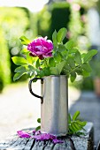 Pink rose and green leaves in antique metal jug on wooden bench outdoors