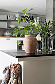 Houseplant in clay pot and vase of flowers on kitchen counter