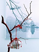 Bundle of crockery tied with red cord hung from branch