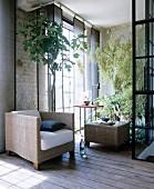 Eckige Korbmöbel und große Zimmerpflanzen im Loft