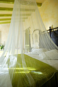 Mosquito net over bed in bedroom with green ceiling beams