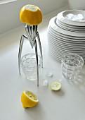 Juicy Salif citrus squeezer, halved lemon and drinking glasses