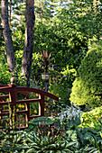Holzgeländer in bewachsenem Garten