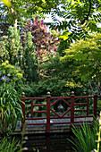 Blick auf Holzbrücke in bewachsenem Garten